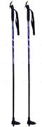 Палки лыжн. Бийск р.120-135 см (р.135)